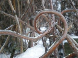 snow-ice-3.jpg