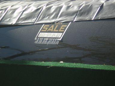 green-limo-3.jpg